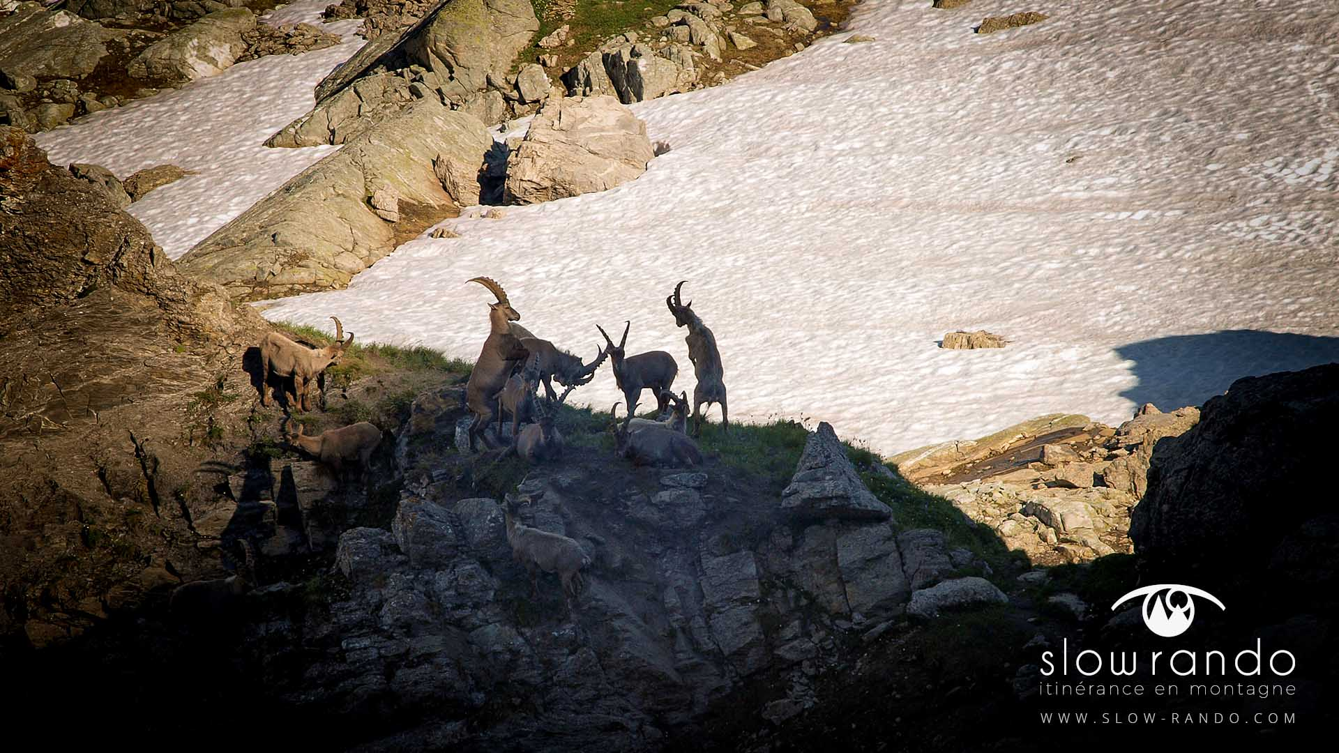 Beaufortain Tour Itinerance Trek Bivouac Bouquetin Slow Rando
