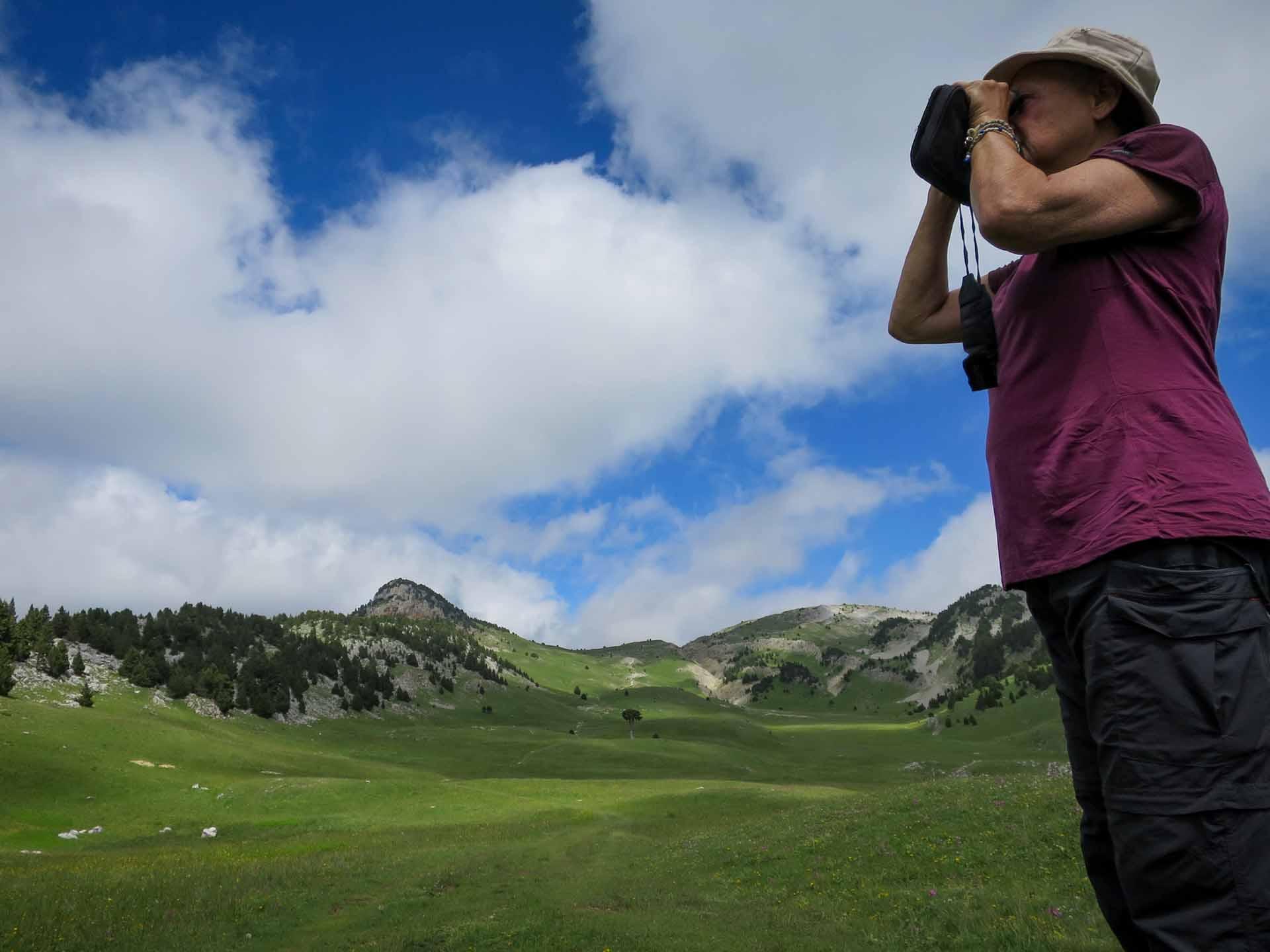Observer Marmottes Jumelles Hauts Plateaux Vercors Plaine Quirlie Slow Rando