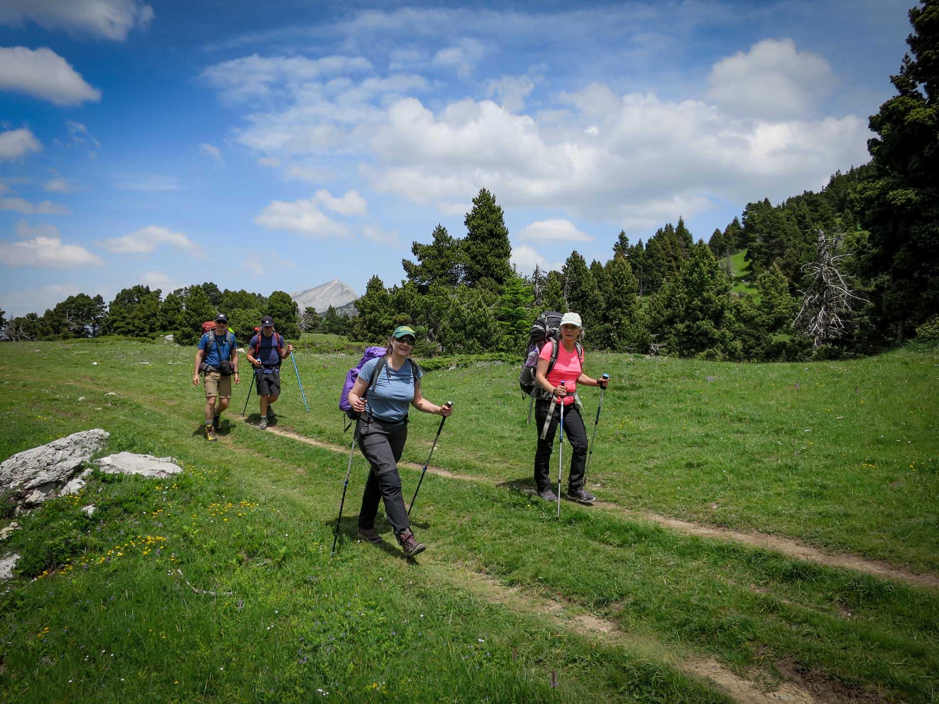 Slow Rando Col Pison Reserve Hauts Plateaux Vercors Grand Veymont Rousset Col