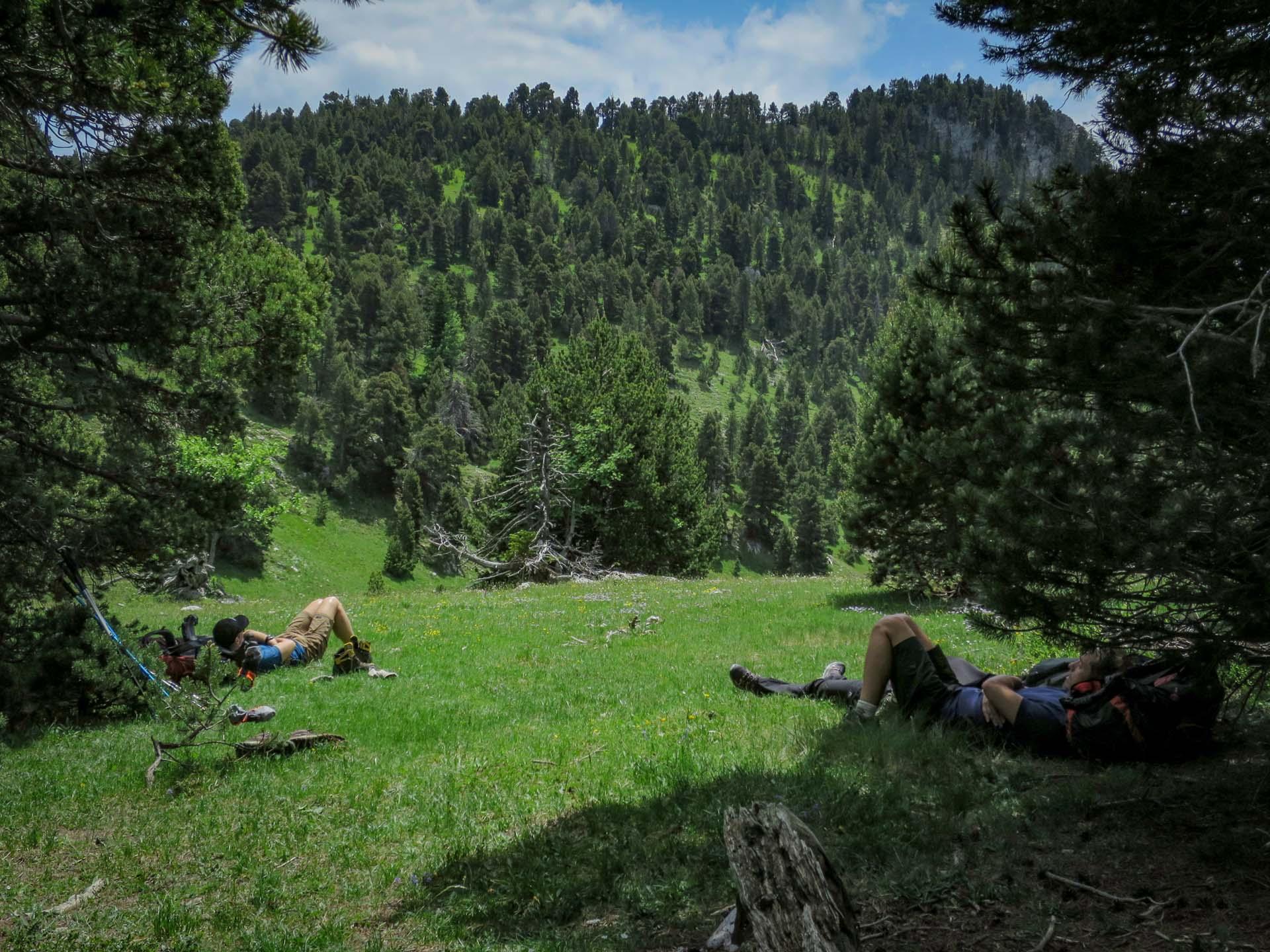 Slow Rando La Sieste Reserve Hauts Plateaux Vercors Grand Veymont Rousset Col