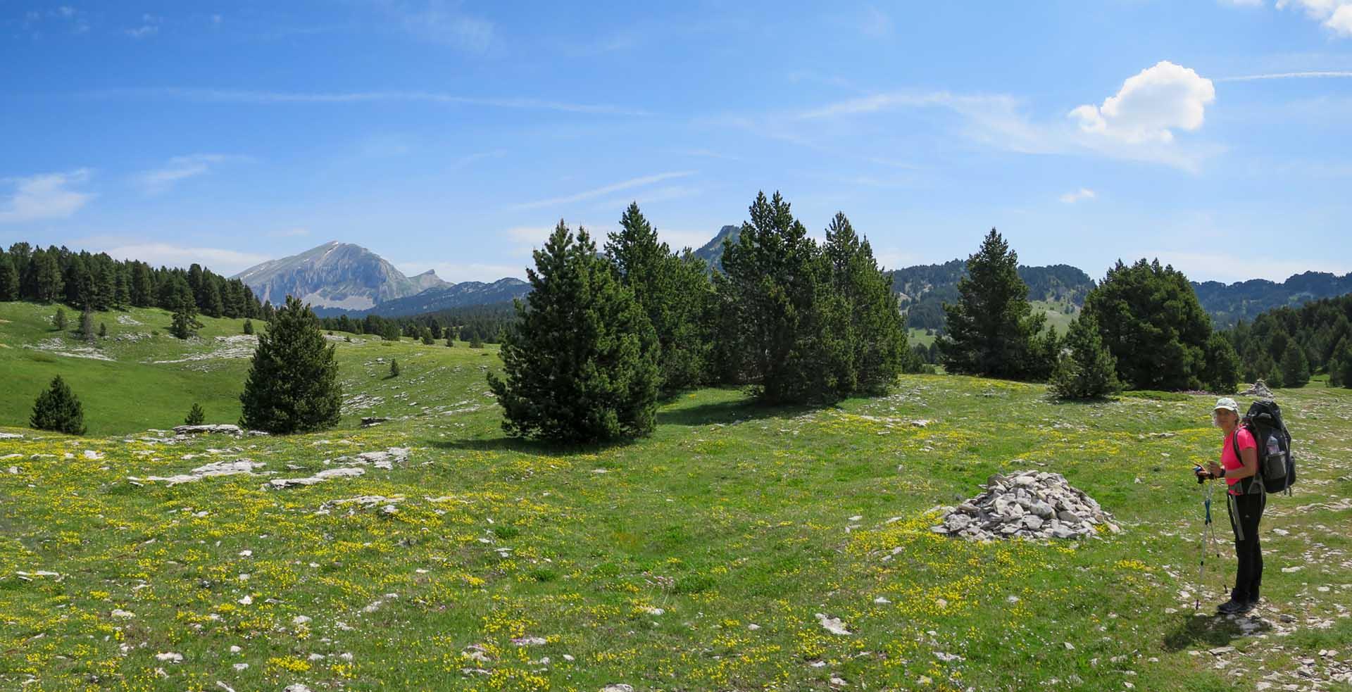 Slow Rando Reserve Hauts Plateaux Vercors Grand Veymont Rousset Col Panorama