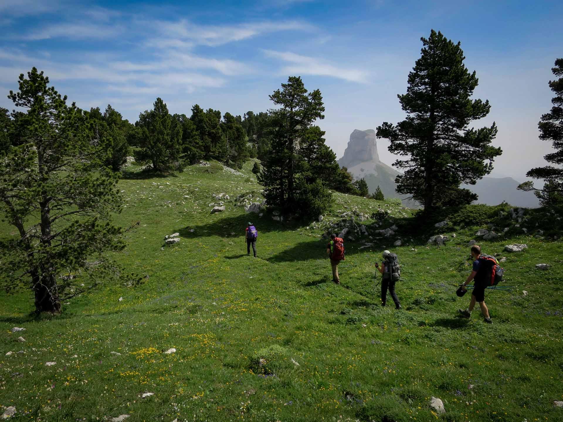 Slow Rando Reserve Hauts Plateaux Vercors Mont Aiguille Rochers Parquet Sentier Sauvage