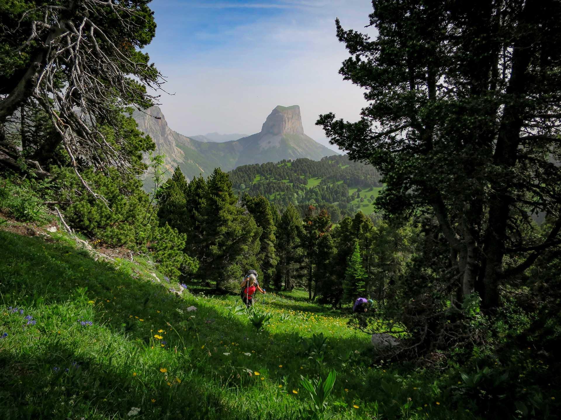 Slow Rando Reserve Hauts Plateaux Vercors Mont Aiguille Découverte Hors Sentier